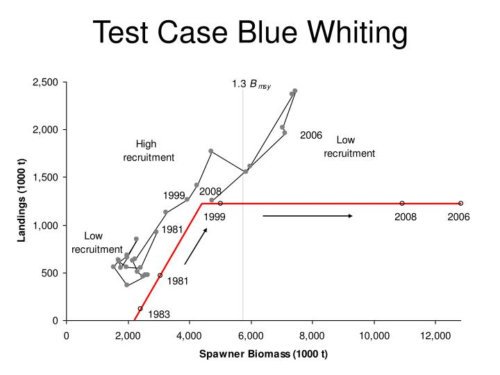 Test Case Blue Whiting