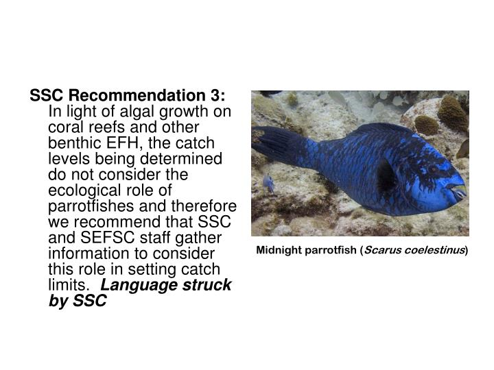 SSC Recommendation 3: