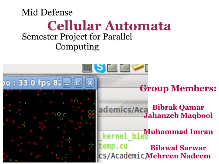 Semester project for parallel computing