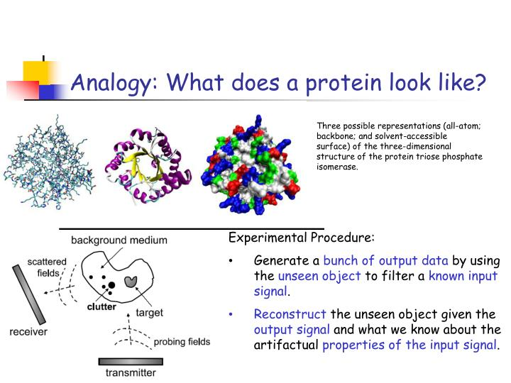 Analogy: What does a protein look like?