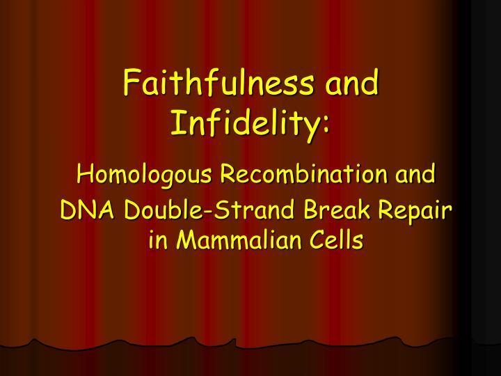 Faithfulness and Infidelity: