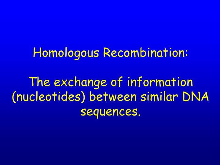 Homologous Recombination: