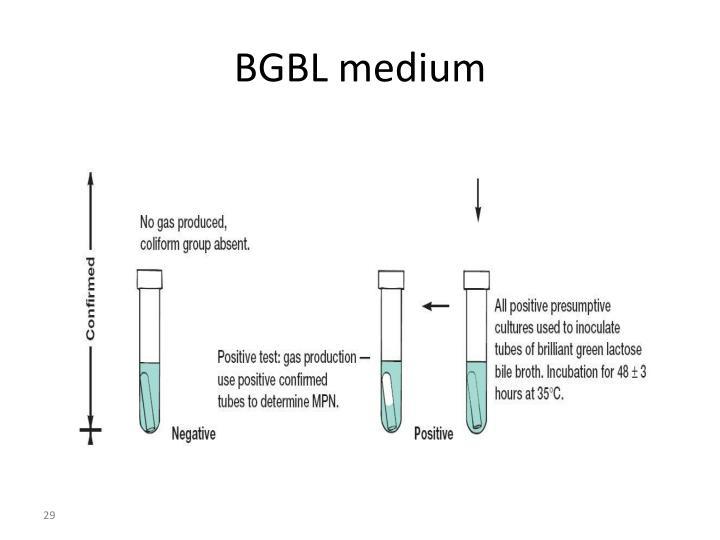 BGBL medium