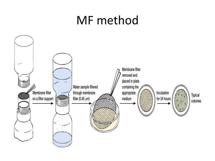MF method