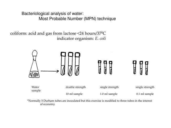 Bacteriological analysis of water: