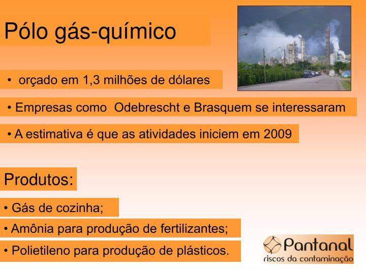 Pólo gás-químico