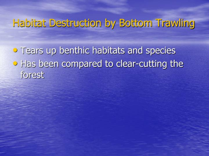 Habitat Destruction by Bottom Trawling
