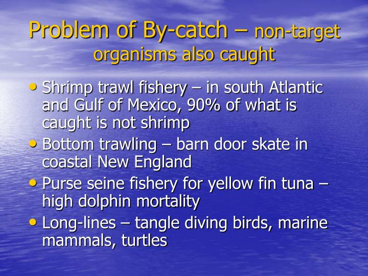 Problem of By-catch –