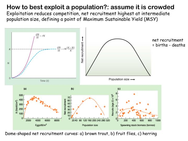 How to best exploit a population?: assume it is crowded