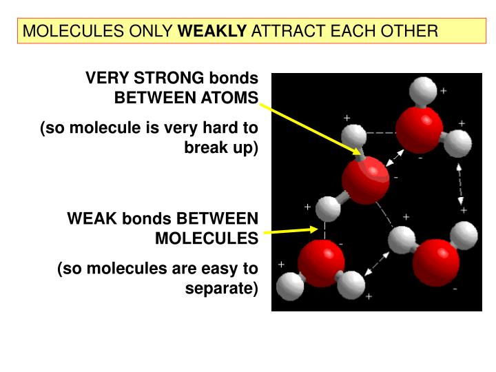 MOLECULES ONLY