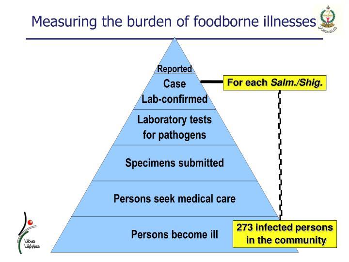 Measuring the burden of foodborne illnesses