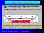 epr modifications d particle foam1