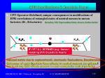 epr modifications d particle foam2