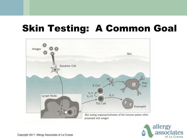 Skin Testing:  A Common Goal