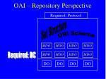 oai repository perspective