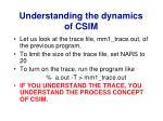 understanding the dynamics of csim