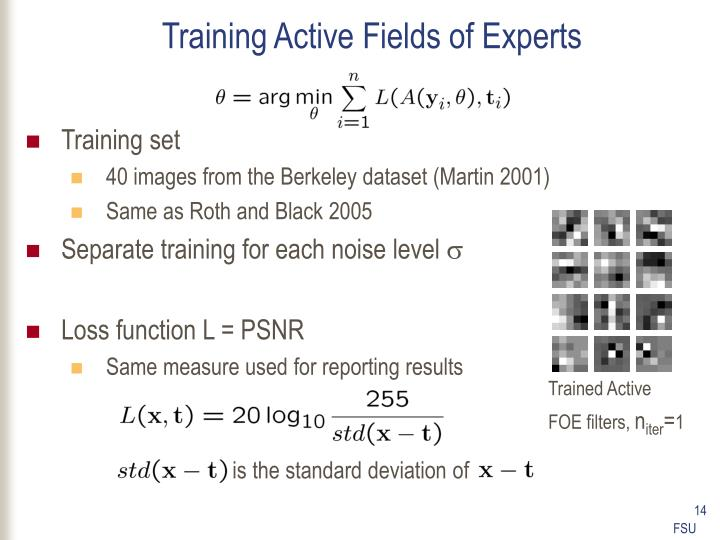 Training Active Fields of Experts