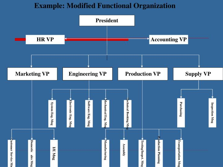 Example: Modified Functional Organization