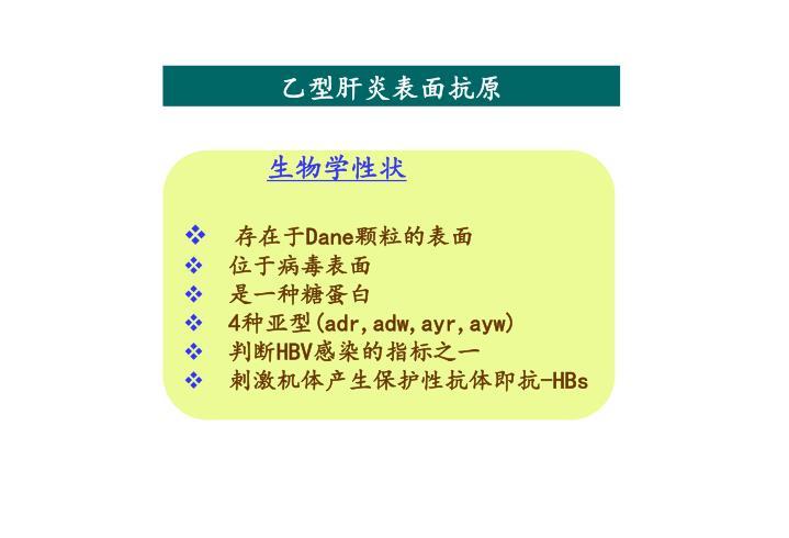 乙型肝炎表面抗原