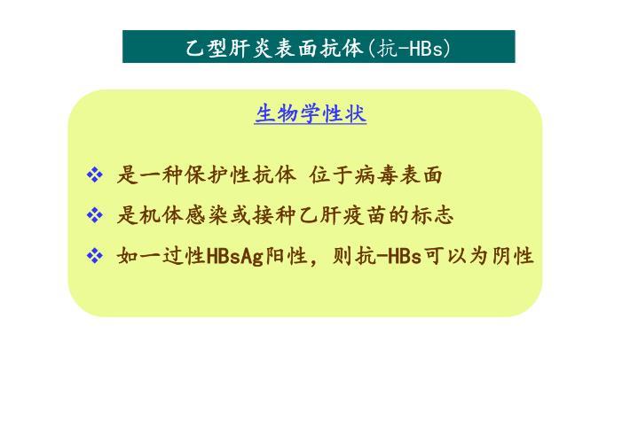 乙型肝炎表面抗体