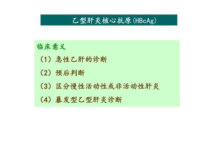 乙型肝炎核心抗原