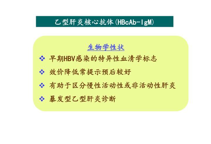 乙型肝炎核心抗体
