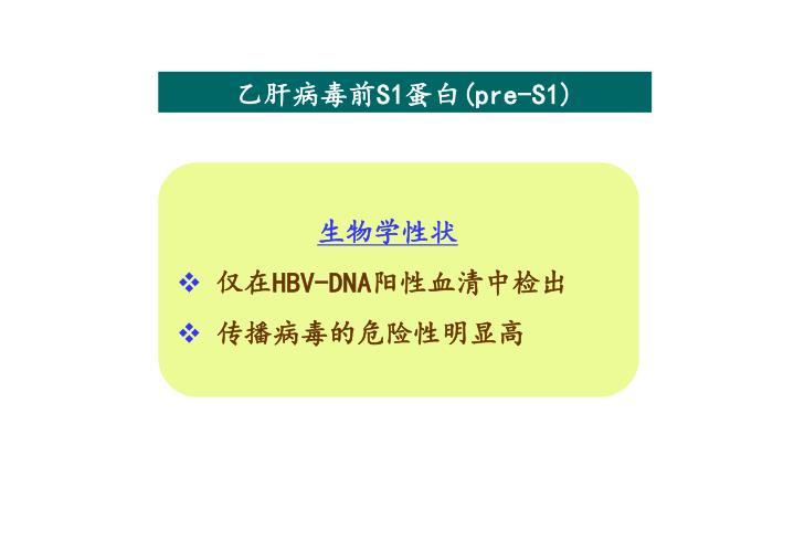 乙肝病毒前S1蛋白(pre-S1)