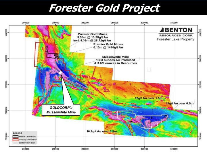 Forester Gold Project