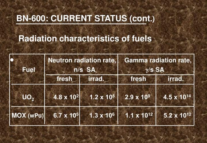 BN-600: CURRENT STATUS (cont