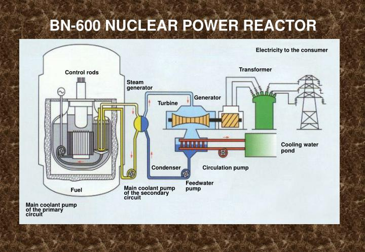 BN-600 NUCLEAR POWER REACTOR