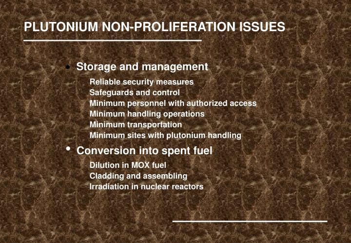 PLUTONIUM NON-PROLIFERATION ISSUES