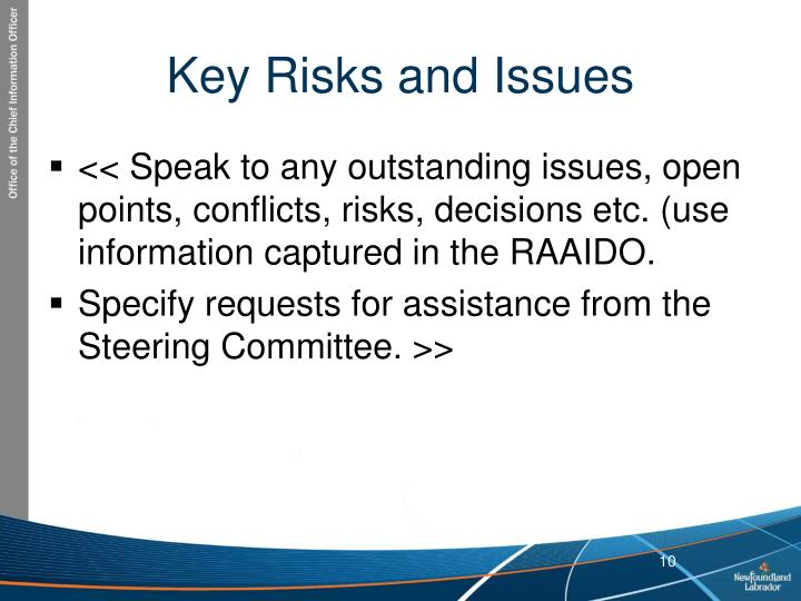 Key Risks and Issues