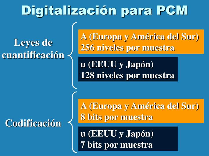 Digitalización para PCM