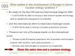 what stakes in the involvement of europe in future nuclear energy systems