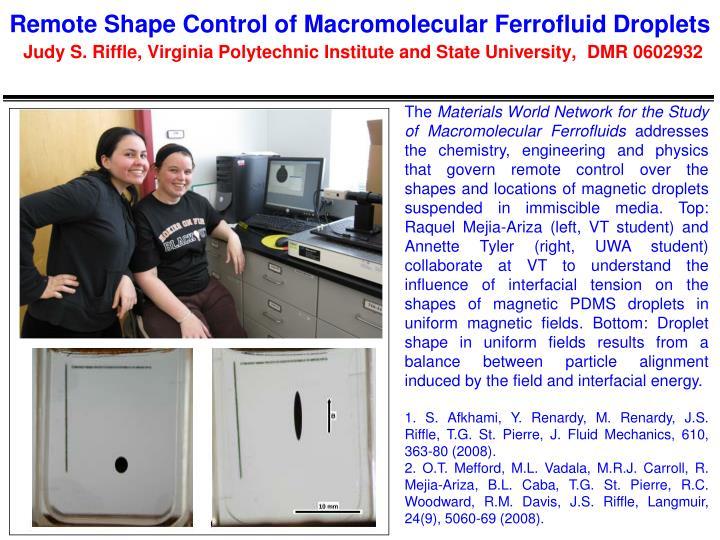 Remote Shape Control of Macromolecular Ferrofluid Droplets