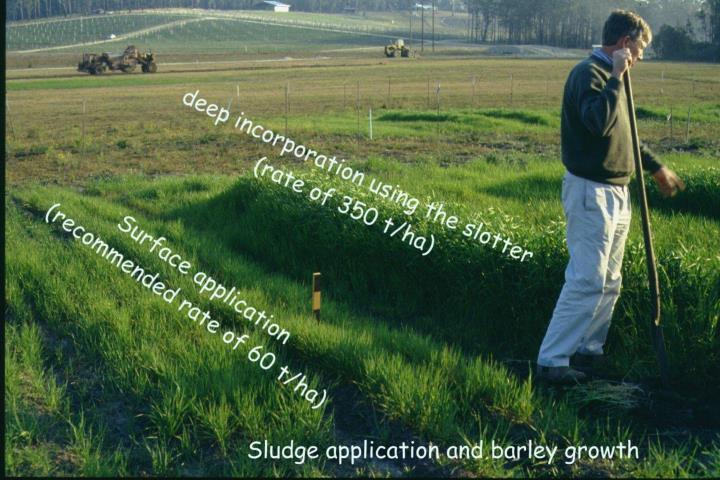Sludge incorporation