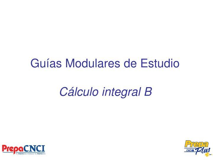 gu as modulares de estudio c lculo integral b