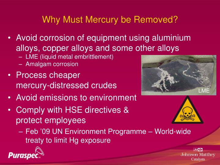 Why Must Mercury be Removed?