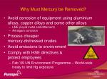 why must mercury be removed