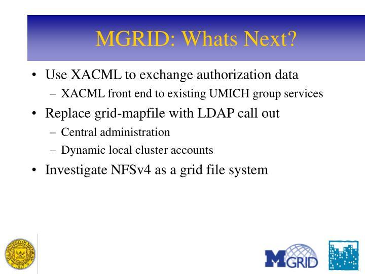 MGRID: Whats Next?