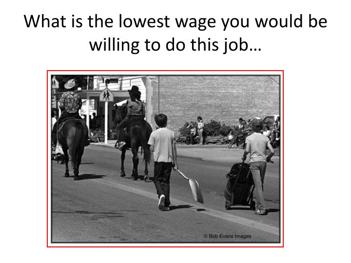 What is the lowest wage you would be willing to do this job…