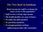 the new deal in sotnikum