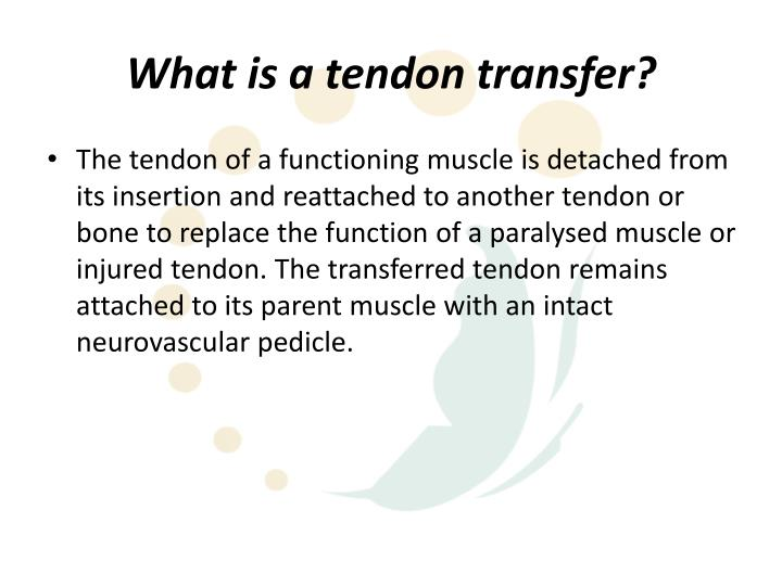 What is a tendon transfer
