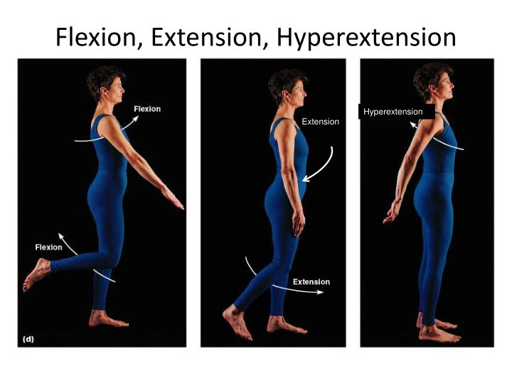 Flexion, Extension, Hyperextension