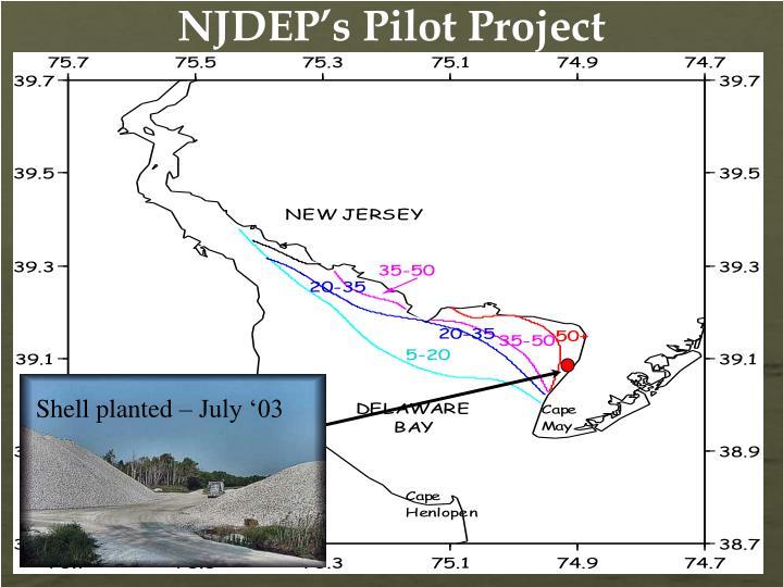 NJDEP's Pilot Project