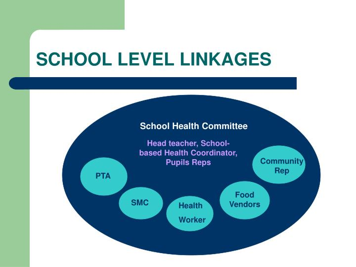 SCHOOL LEVEL LINKAGES