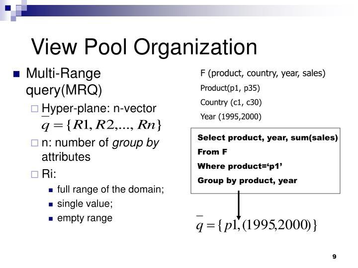 View Pool Organization