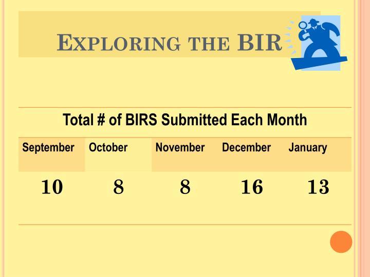 Exploring the BIR