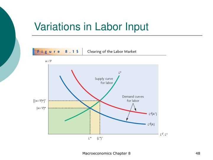 Variations in Labor Input