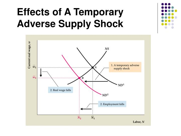 Effects of A Temporary Adverse Supply Shock